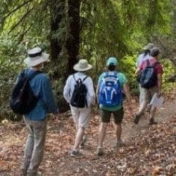 summer hike banner